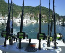 Costa Rica one day Sport Fishing Tour